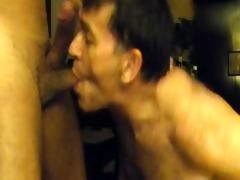 dad engulfing juvenile - brazil