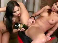 juvenile bitches enjoying sexy sex